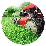 Lawn & Garden Maintenance Toronto